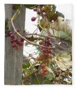 End Of Season Grapes Fleece Blanket