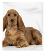 English Cocker Spaniel Fleece Blanket