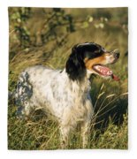 English Setter Dog Fleece Blanket
