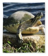 Enjoying The Sun Fleece Blanket