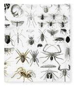 Entomology Myriapoda And Arachnida  Fleece Blanket
