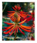 Erythrina Speciosa Fleece Blanket