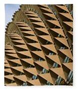Esplanade Theatres Roof 11 Fleece Blanket