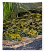 Ethiopian Mountain Vipers Fleece Blanket