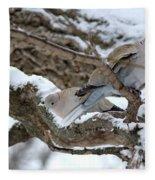 Eurasian  Collard Doves Fleece Blanket