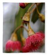Eucalyptus Flower Fleece Blanket