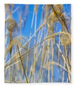 Eulalia Grass Native To East Asia Fleece Blanket