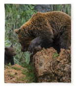 Eurasian Brown Bear 13 Fleece Blanket