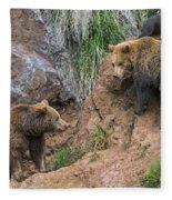 Eurasian Brown Bear 17 Fleece Blanket