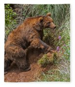 Eurasian Brown Bear 21 Fleece Blanket