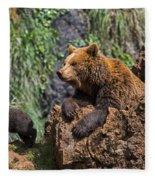 Eurasian Brown Bear 8 Fleece Blanket