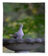 Eurasian Collared Dove Fleece Blanket