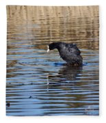 Eurasian Coot Fleece Blanket