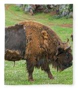 European Bison 4 Fleece Blanket
