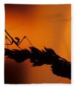 European Devil Mantis Fleece Blanket