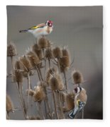 European Goldfinch Fleece Blanket