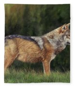 European Grey Wolf Fleece Blanket