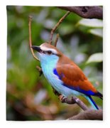 European Roller Fleece Blanket