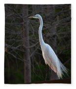 Evening Egret 2 Vertical Fleece Blanket