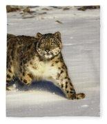 Evening Prowl Fleece Blanket
