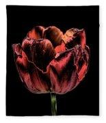 Evening Red Fleece Blanket