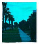 Evening Stroll At Isle Of Palms Fleece Blanket