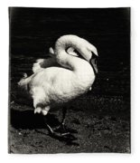 Evening Swan Fleece Blanket