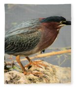 Everglades Green Heron Fleece Blanket