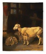 Ewe And Lambs Fleece Blanket