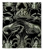 Examples Of Decapoda Kunstformen Der Natur Fleece Blanket