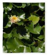Exotic Colored Waterlilies In The Hot Mediterranean Sun Fleece Blanket