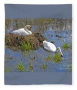 Expectant Fleece Blanket