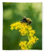 Exploring Goldenrod 2 Fleece Blanket