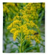 Exploring Goldenrod 3 Fleece Blanket