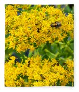 Exploring Goldenrod 5 Fleece Blanket