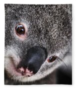 Eye Am Watching You - Koala Fleece Blanket