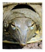 Eye Liner Turtle 8494 Fleece Blanket