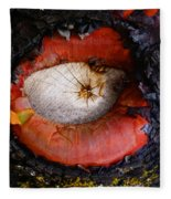 Eye Of Madrone Fleece Blanket