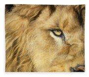 Eye Of The Lion Fleece Blanket