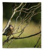 Eye On The Sparrow Fleece Blanket