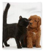 F1b Goldendoodle Pup With Kitten Fleece Blanket