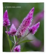 F2 Point 8 1 200th Sec Iso200 Fleece Blanket