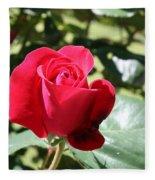 Fabulous Red Rose Fleece Blanket