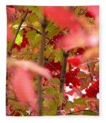 Fall 08-007 Fleece Blanket