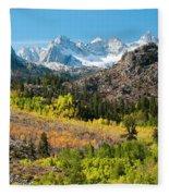 Fall Aspen Below The Sierra Crest Fleece Blanket