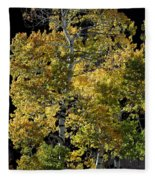 Fall Aspen Fleece Blanket