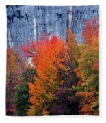 Fall At Steele Creek Fleece Blanket