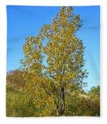 Fall At The Dunes Fleece Blanket