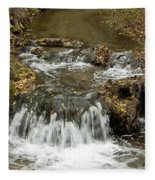 Fall At The Lower Falls Fleece Blanket