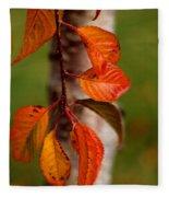 Fall Beauty Fleece Blanket